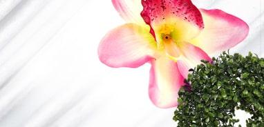Produkty do florystyki